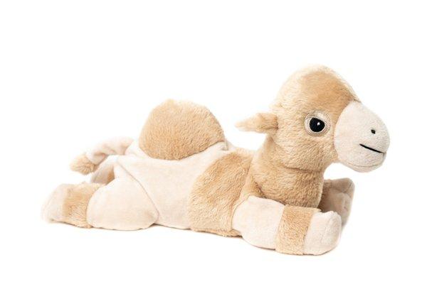 Baby Kamel mit Klettverschlus