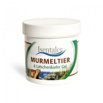 Murmeltier- & Latschenkiefergel 250 ml