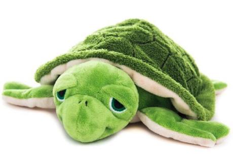 Wasserschildkröte grün, mit Klettverschluss